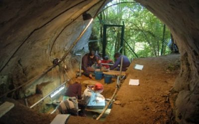 A Cova de Eirós ten a clave da extinción dos Neandertais