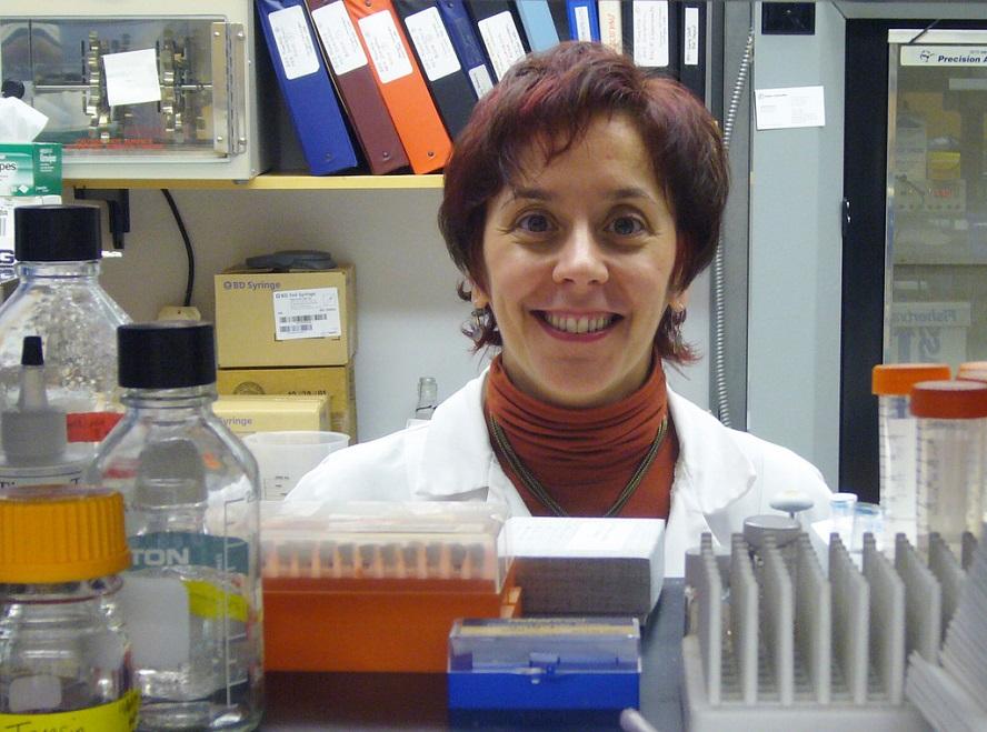 O equipo investigador de Marisol Soengas logra predicir o melanoma