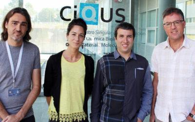 O CiQUS deseña enzimas artificiais para actuar no interior das células